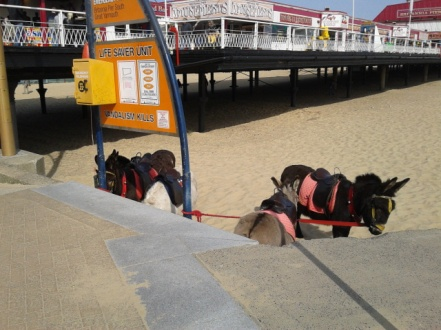 Great Yarmouth (48)