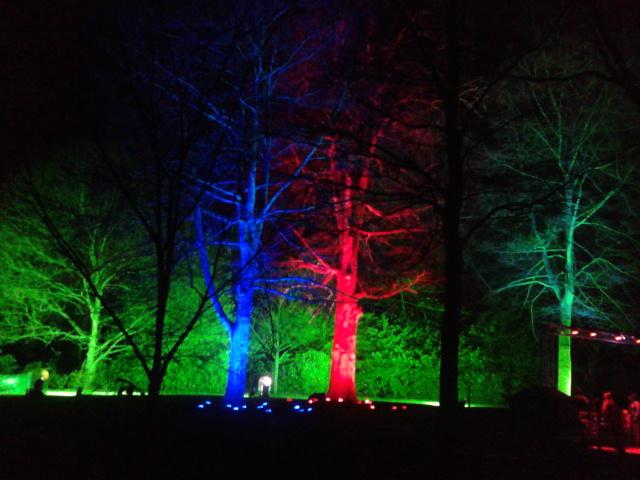 Kew Gardens by night (12)