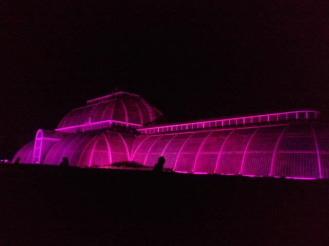 Kew Gardens by night (25)