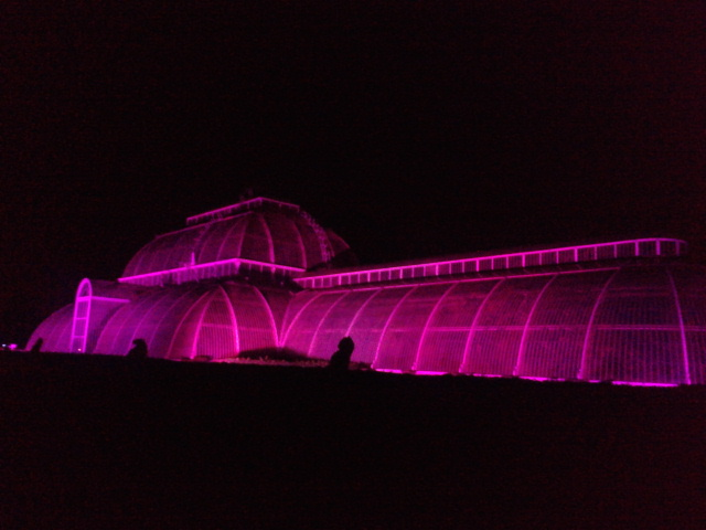 Kew Gardens by night (25)