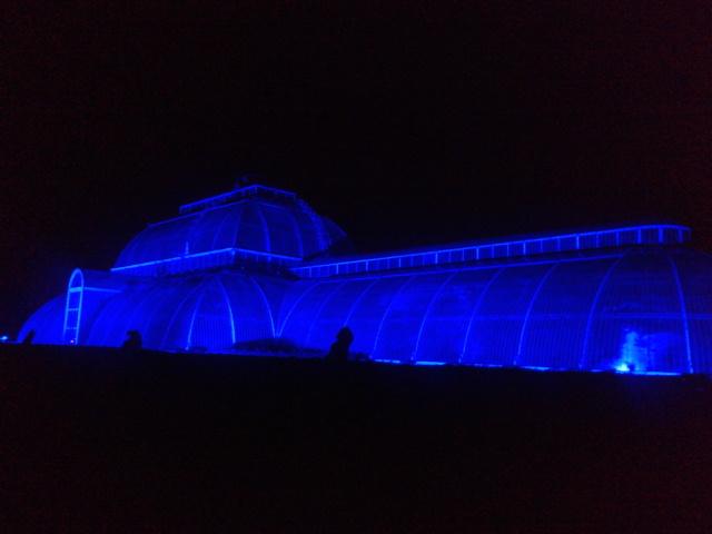 Kew Gardens by night (26)