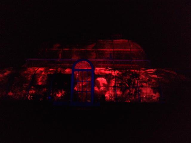 Kew Gardens by night (31)