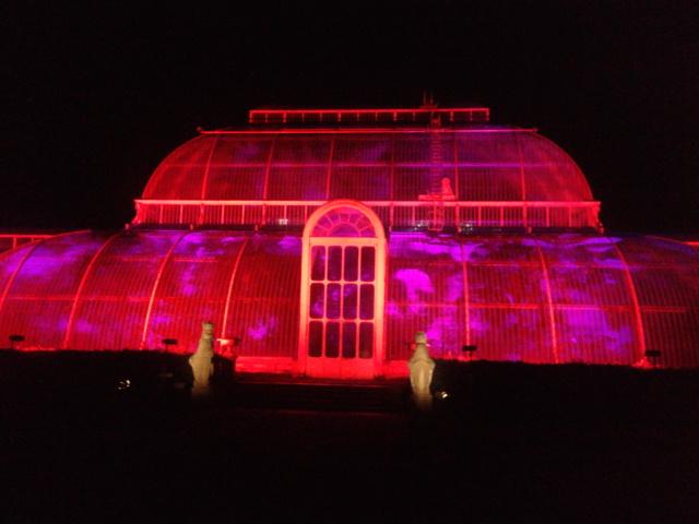 Kew Gardens by night (34)