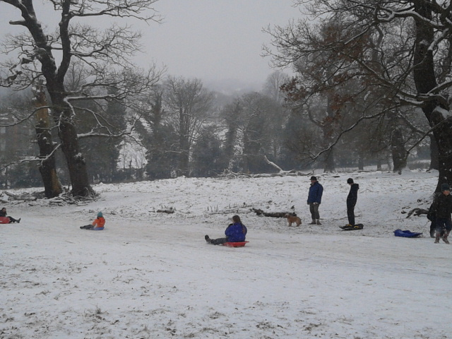 Richmond Park (3)