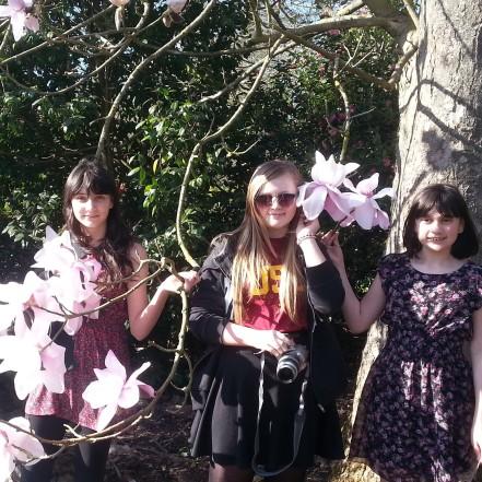 Saville Gardens (11)