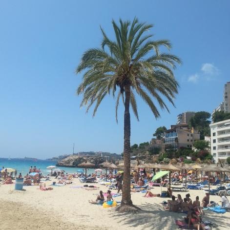 Mallorca 2014 (15)