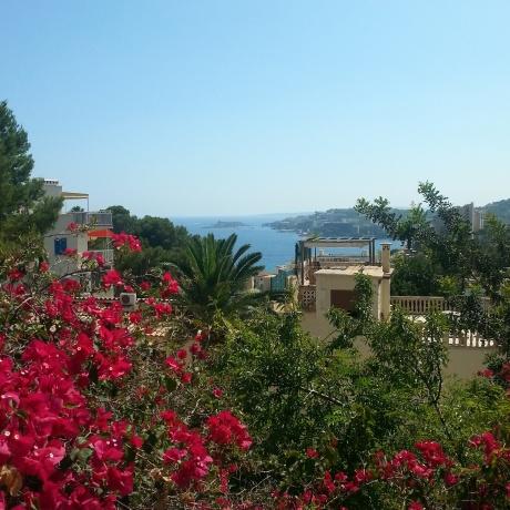 Mallorca 2014 (30)