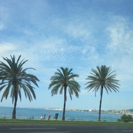 Mallorca 2014 (5)