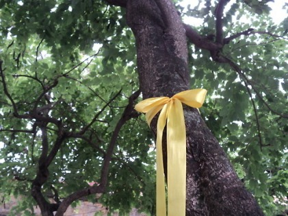 Tie-a-yellow-ribbon-if-you-missed-me