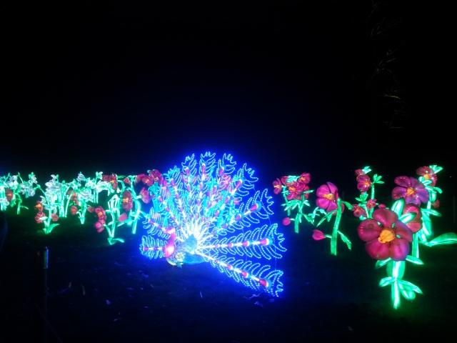Kew Gardens (14)