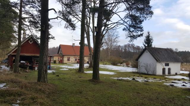 sweden-feb-26