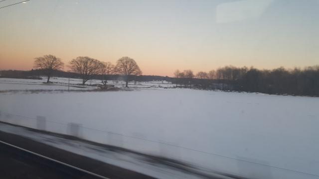 sweden-feb-8