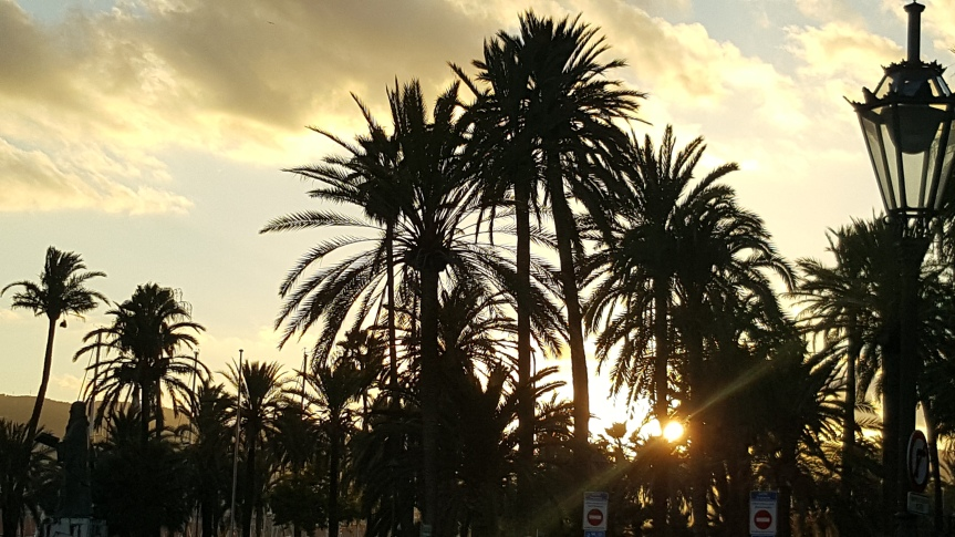 Mallorca (12)