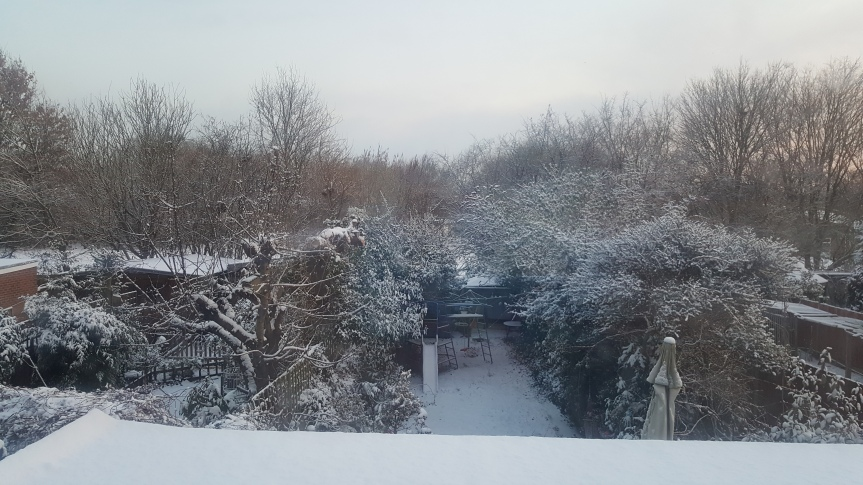 Snow (7)