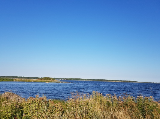 Sweden Summer (4)